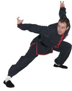 Kung Fu Eagle Style Kung Fu Eagle Claw